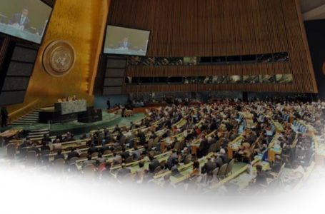 A quoi servent les  assemblées générales de l'Organisation des Nations Unies pour les pays africains ?